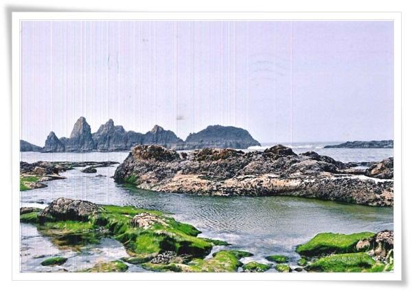 pacific ocean coastline.jpg
