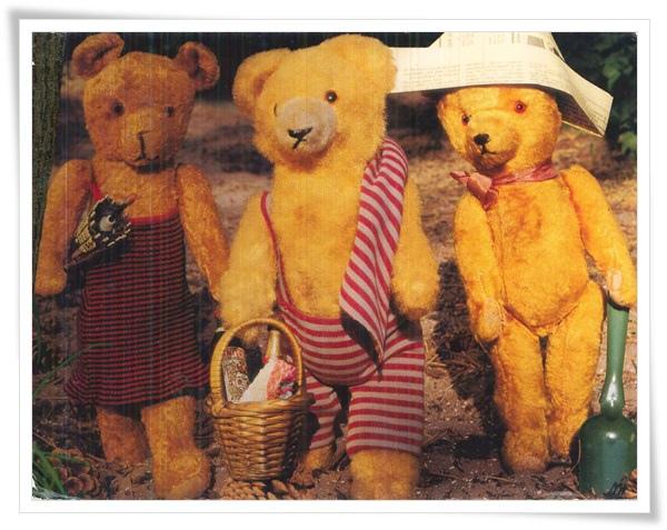 teddy have a picnic.jpg
