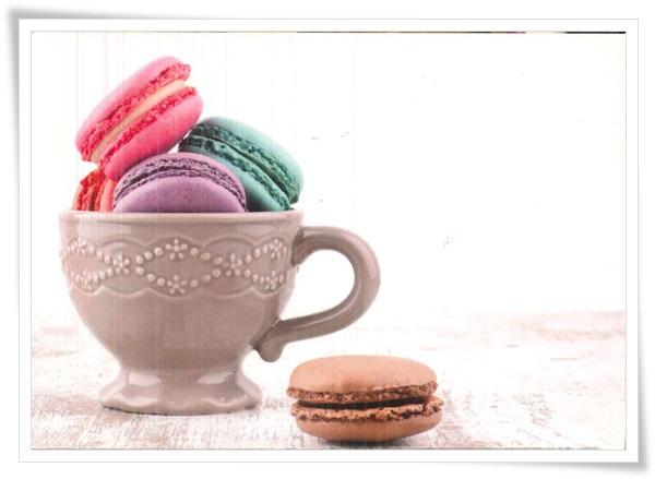 macaron _cup.jpg