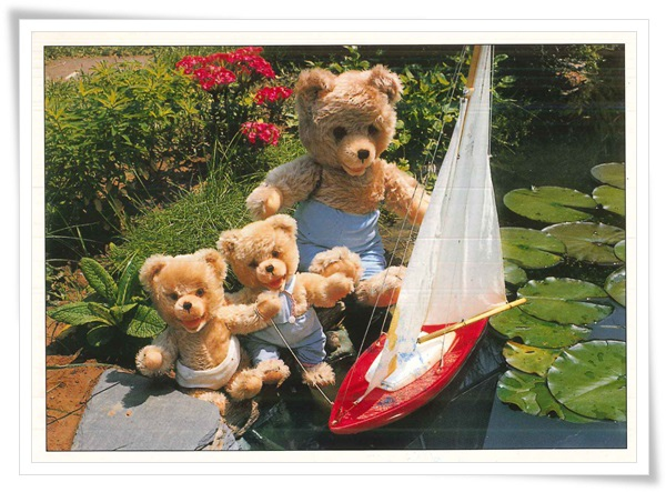 teddy family in the pond.jpg