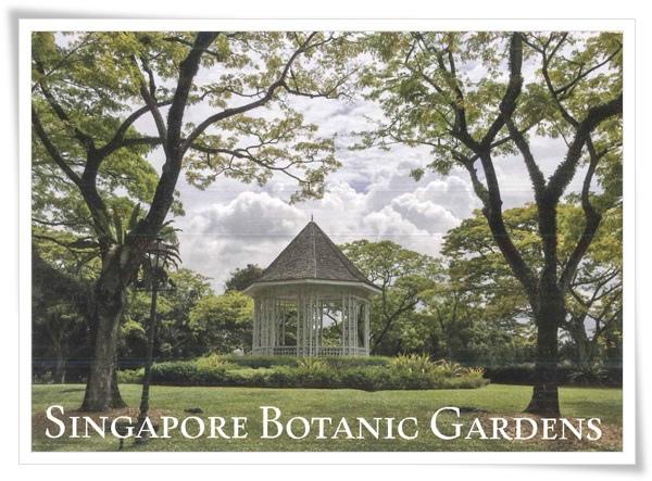singapore botanic gardens.jpg