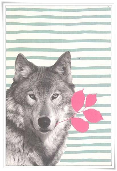wolf_FR.jpg