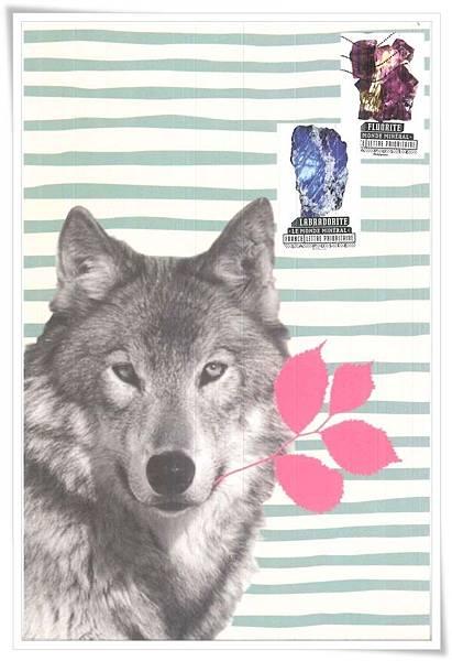 wolf_FR1.jpg
