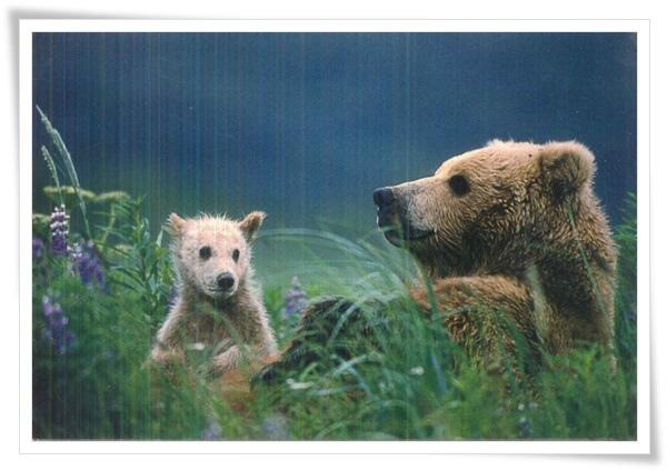 teddy+baby_DE.jpg