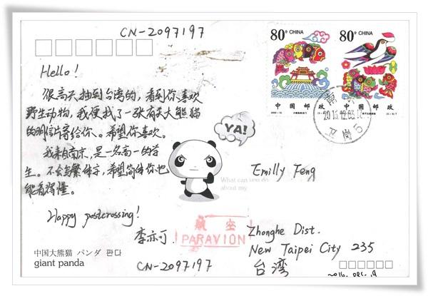 大熊貓2.jpg