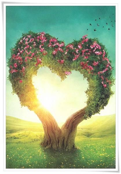 love tree.jpg