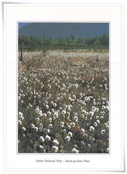 日光國立公園.jpg