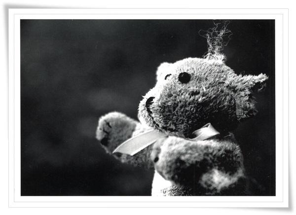 teddy bw.jpg