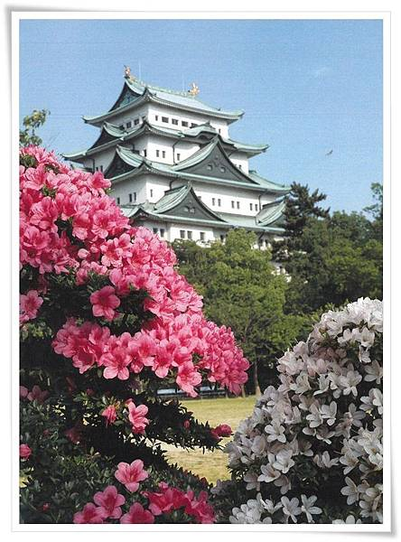 nagoy castle with azaleas.jpg