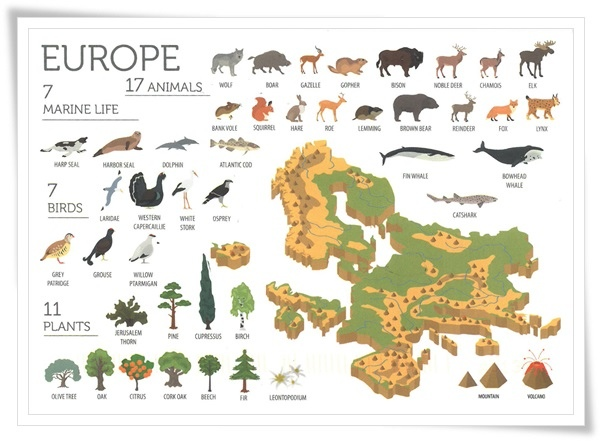 fauna and flora of europe.jpg