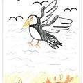 凱的北極海鷹.jpg