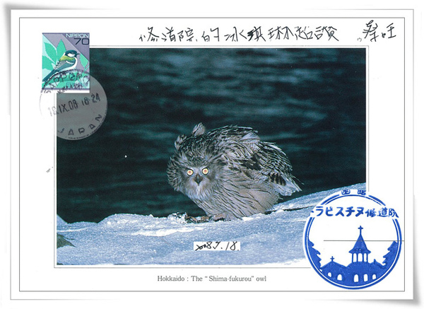 "<<北海道>>Hokkaido:The ""Shima-fukurou""owl"