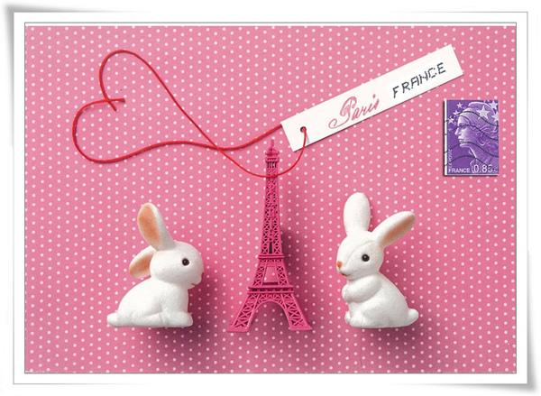 巴黎小兔.jpg
