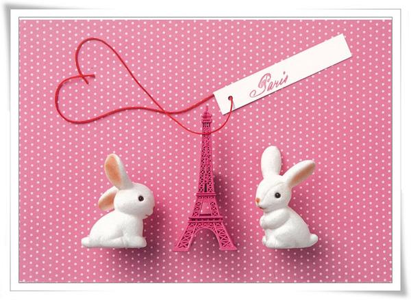 巴黎小兔1.jpg