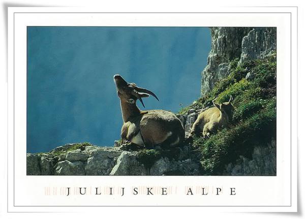 julijske alpe.jpg