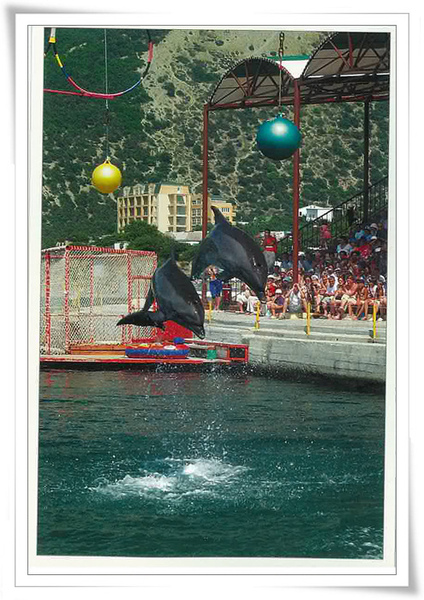 Anapa delphin.jpg