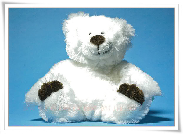 Swilzerland bear.jpg