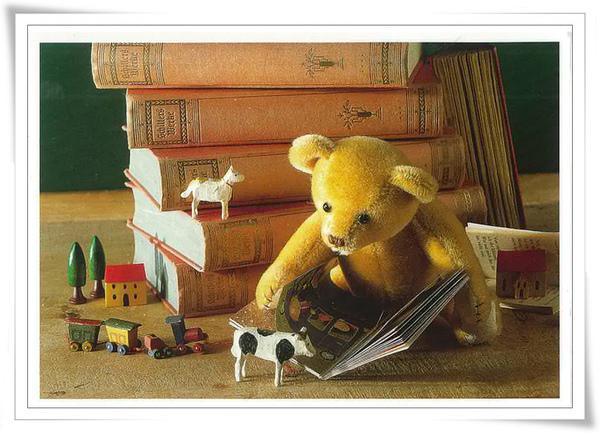 泰迪 看書.jpg