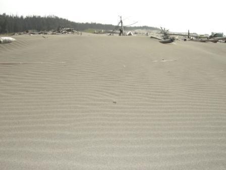 北風吹襲的沙紋
