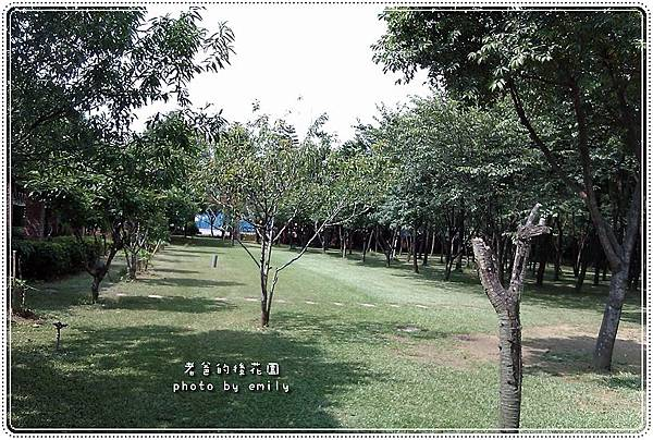 20110616-9.jpg