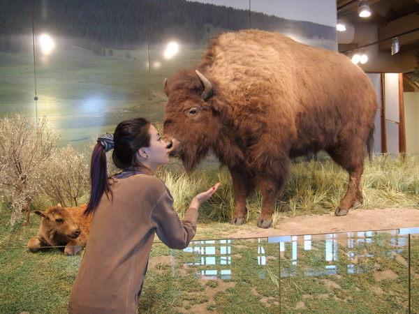 所以博物館內也有牠...