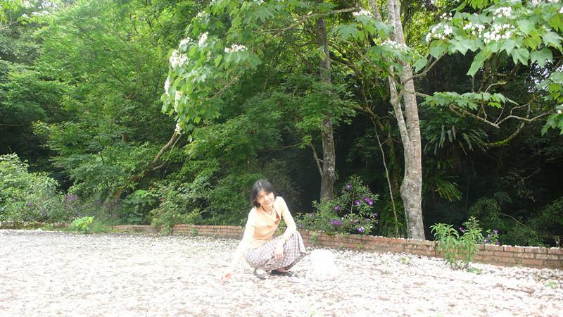 P1170124_副本.jpg