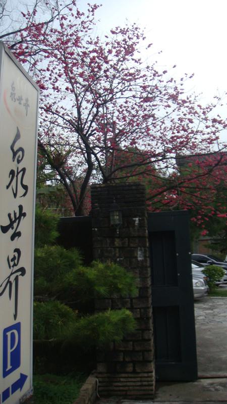 DSC09229_副本.jpg