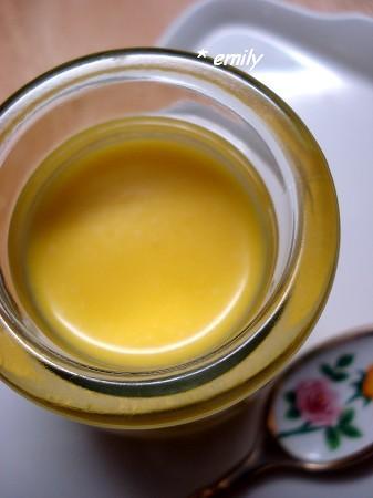 20100613芒果奶酪 001b.JPG