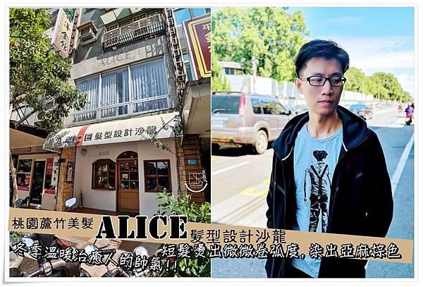 Alice髮型設計 (27.).jpg