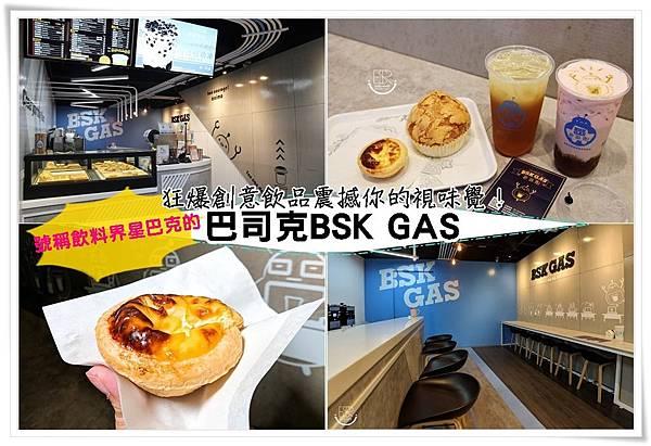 巴司克BSK GAS (28)