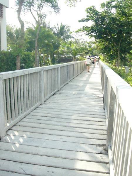 走過這條橋…就可以到另一個泳池