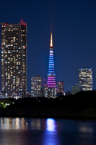 tokyo tower3.jpg