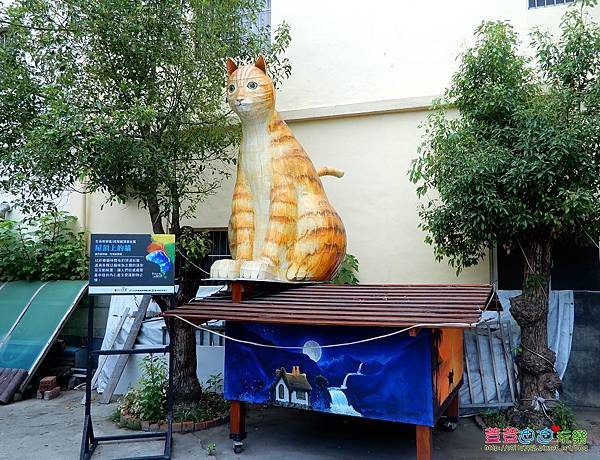 屋頂上的貓 (16).jpg