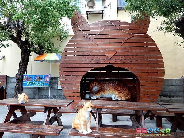屋頂上的貓 (35).jpg