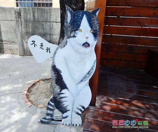 屋頂上的貓 (33).jpg