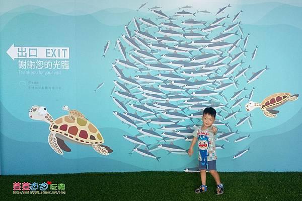 澎湖水族館 (8).jpg