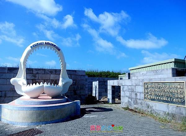 澎湖水族館 (16).jpg