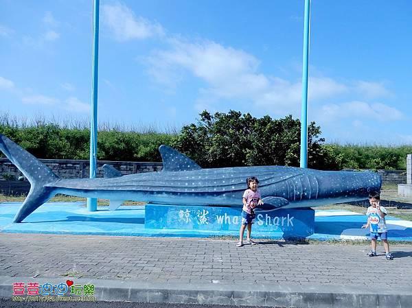 澎湖水族館 (12).jpg
