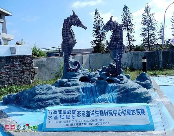 澎湖水族館 (19).jpg