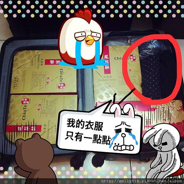 141125 孕婦想吃東西我的行李只有一點點.JPG