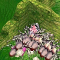 mabinogi_2011_04_12_003.jpg