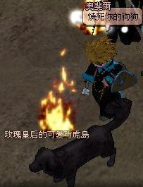 mabinogi_2007_05_20_012.JPG
