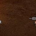 mabinogi_2007_06_10_006.JPG