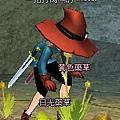 mabinogi_2007_06_16_003.JPG