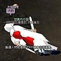 mabinogi_2007_06_17_019.JPG
