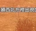 mabinogi_2015_05_04_109.jpg