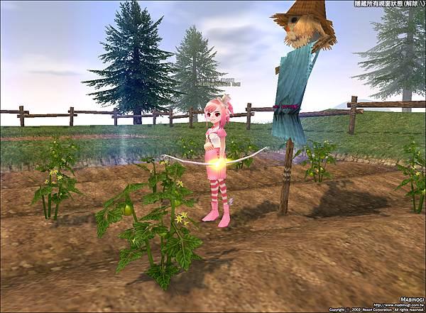 mabinogi_2010_12_03_003.jpg