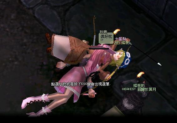 mabinogi_2009_03_14_064.jpg