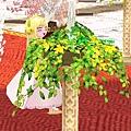 mabinogi_2009_04_12_200.jpg