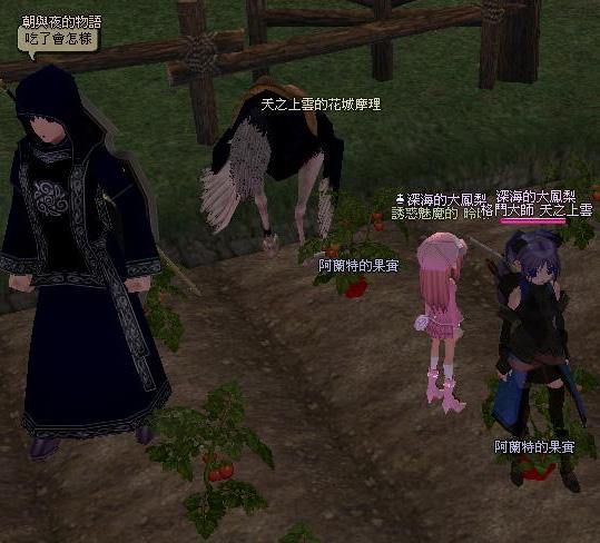 mabinogi_2009_04_22_018.jpg